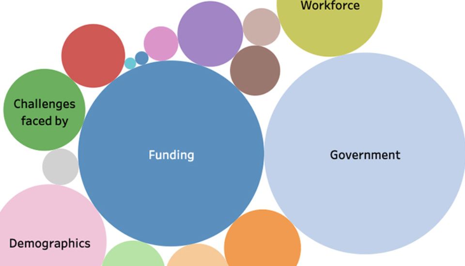 Data visualisation: ICDA Not-for-Profit Governance Roadmap 2020